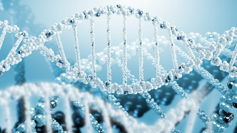 ژنتیک انسانی و ژنتیک پزشکی - رتبه برترهاژنتیک انسانی و ژنتیک پزشکی - رتبه برترها